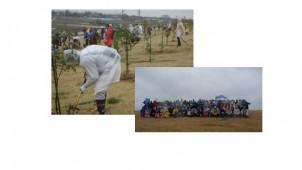社員の環境貢献活動を全国に拡大 TOTO