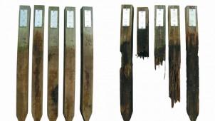 アセチル化処理木材「アコヤ」に「優良非保存剤処理木材」認定