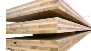 新木質材料「CLT」使ったエコハウス、「エコライフ・フェア2014」で公開