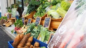 和久環組、「横濱・地元野菜マルシェ」毎月第3日曜日に定期開催