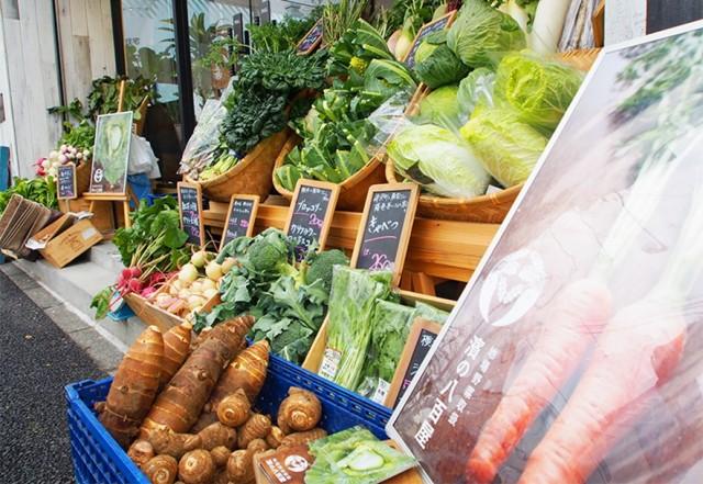 """新鮮な""""朝採れ""""野菜と対面販売が魅力"""