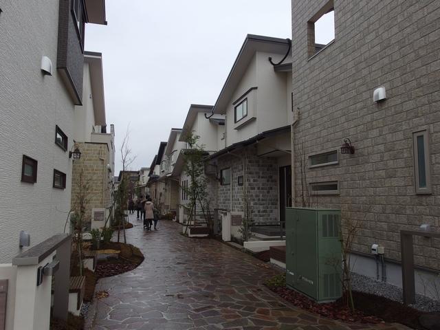 戸建分譲プロジェクト「浦和美園E-フォレスト」の街並み