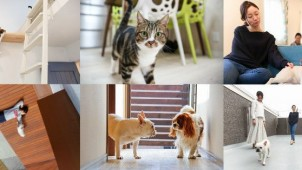 ペットと暮らすシェアハウスが和光市にオープン