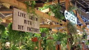 大都、カインズ初の都市型店舗でDIYとグリーンの売り場をプロデュース