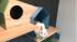 カツデンアーキテック、ネコ用アイテム「ネコノマ」シリーズ第一弾を発売