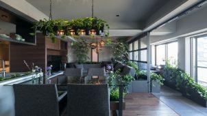 グローバルベイス、室内緑化に特化したリノベプランの提供を開始
