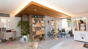 大和ハウス工業、幕張に猫カフェをモチーフにした住宅展示場 「猫の日」にオープン