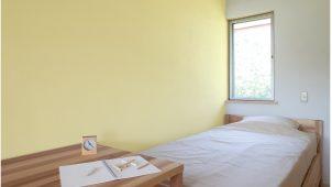 高千穂シラス、消臭・調湿機能はそのままにシラス壁の色を手軽に一新