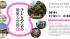 パナソニック、「子どものための建築と空間展」を東京・汐留で1月から