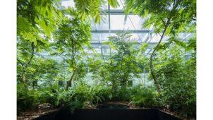 """パーカーズ、PBS・トヨタが行う""""植物と共生する空間""""の研究に協力"""