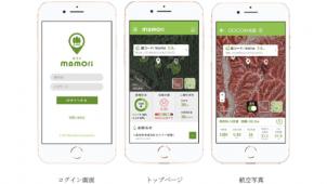 住友商事ら3者、森林管理ツール開発に向けた実証実験