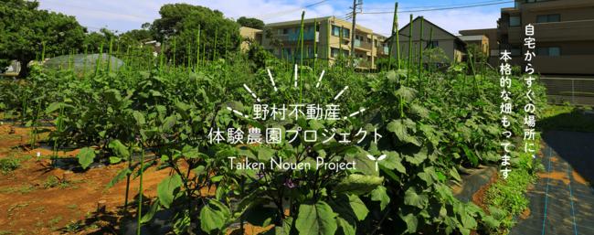 野村不動産とJA世田谷目黒、「都市型体験農園サービス」開始
