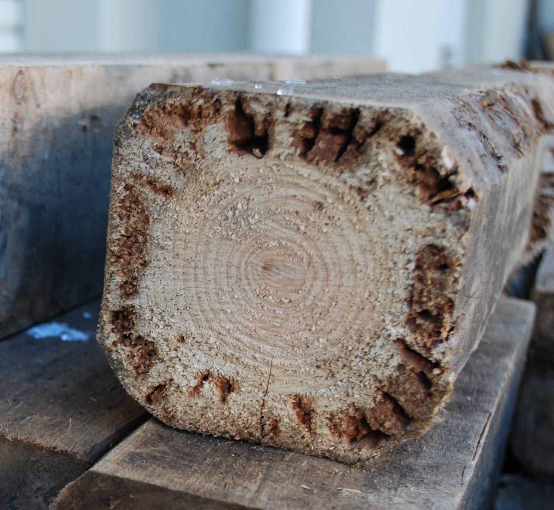 【連載】木造住宅「耐久性向上」のレシピ:第7回「外壁板張りの耐久性を高める」
