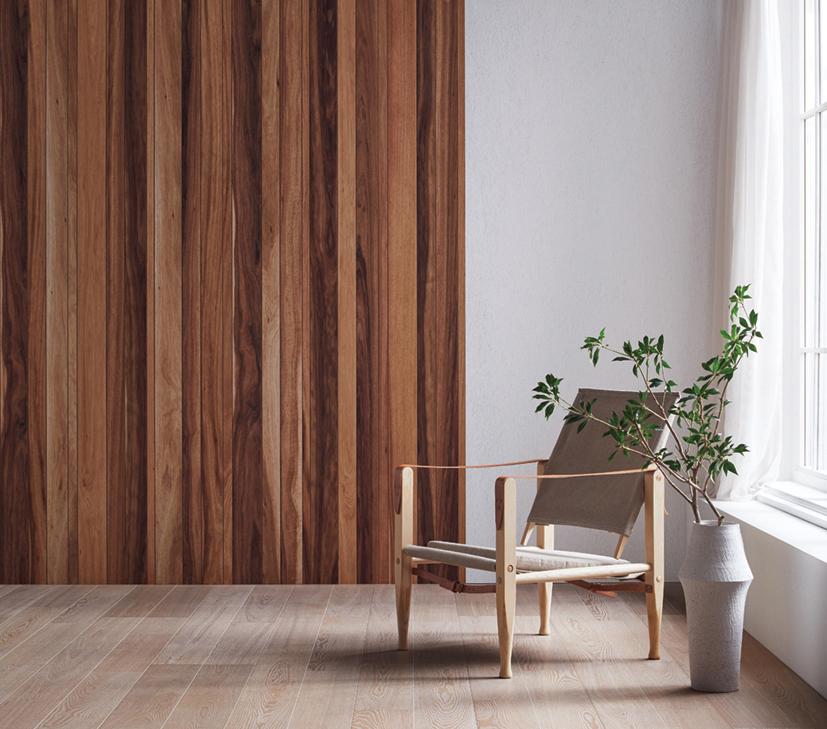 朝日ウッドテック、壁・天井材「the wall」突板シリーズに2樹種