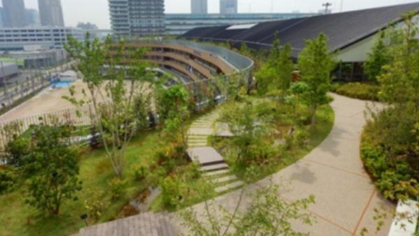国交省、全国の緑化施工実績を公表 屋上・壁面ともに増加