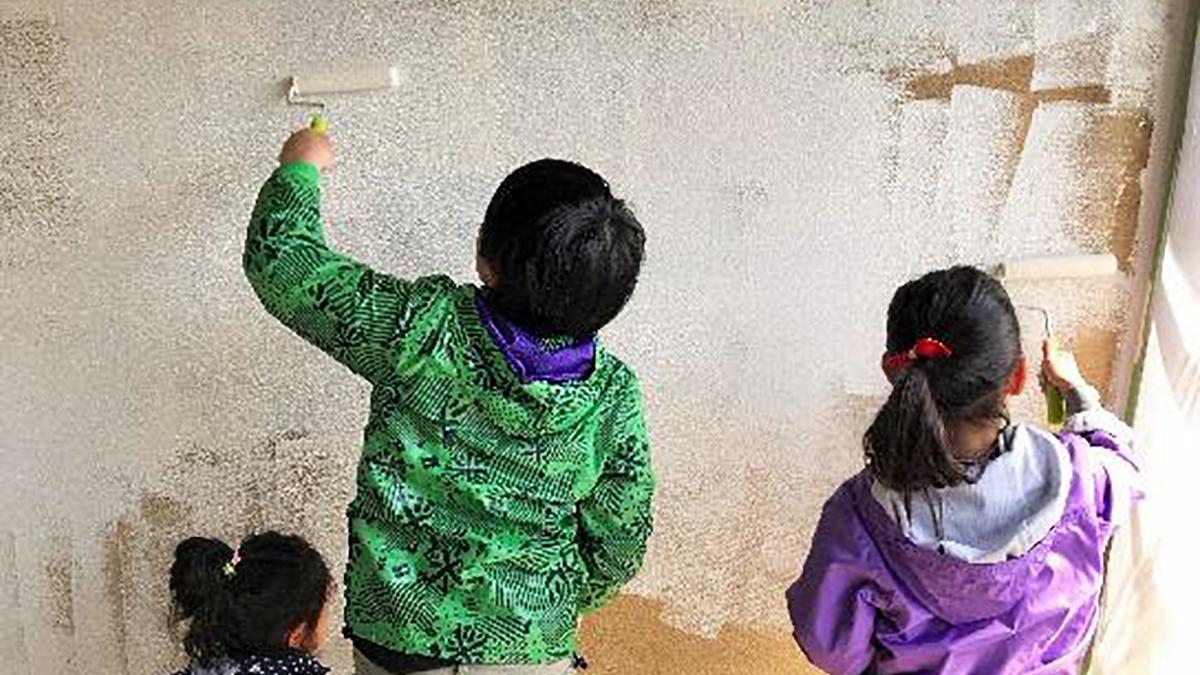 フジワラ化学、珪藻土塗材に抗菌・抗ウイルス機能を付与