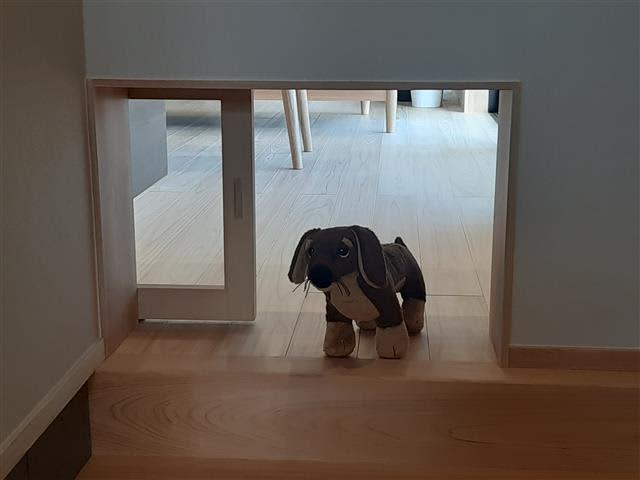 新和建設 愛犬と暮らす家、提案 玄関と居間つなぐ扉や、洗い場付き木製デッキ