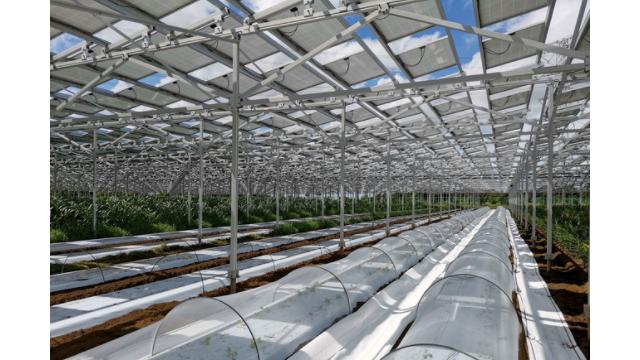 再エネ比率+10%に向けた提言 太陽光発電事業者連盟