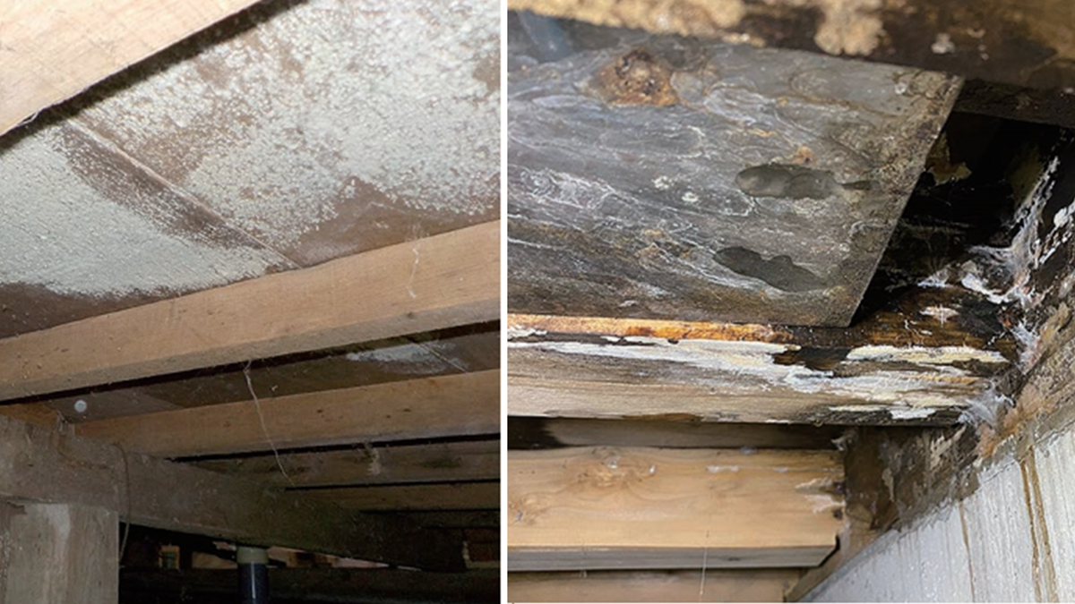 腐朽、カビ、シロアリの3重リスク防ぐ床下対策