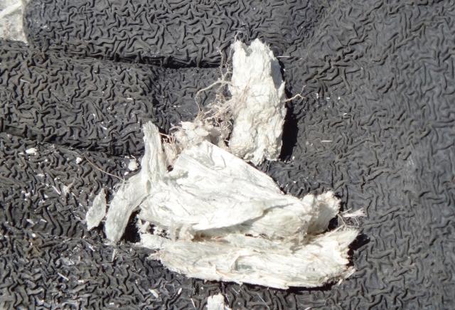 96件を石綿吸入による疾病と判定――環境省