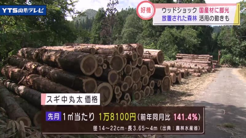 ウッドショックで安定供給へ伐採作業 山形市